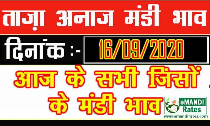 Mandi Bhav 16 September