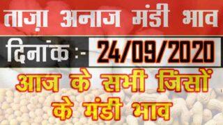 Mandi Bhav 24 September 2020