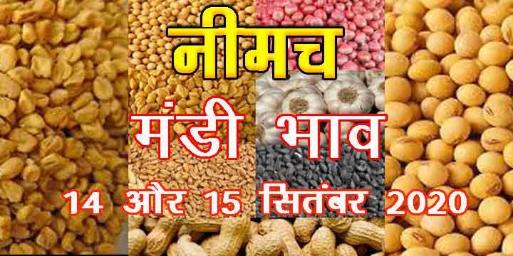 Neemuch Mandi Bhav Sept. 14, 15, 2020