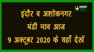Check latest MP Ashoknagar Indore Mandi Bhav (Rates) Online