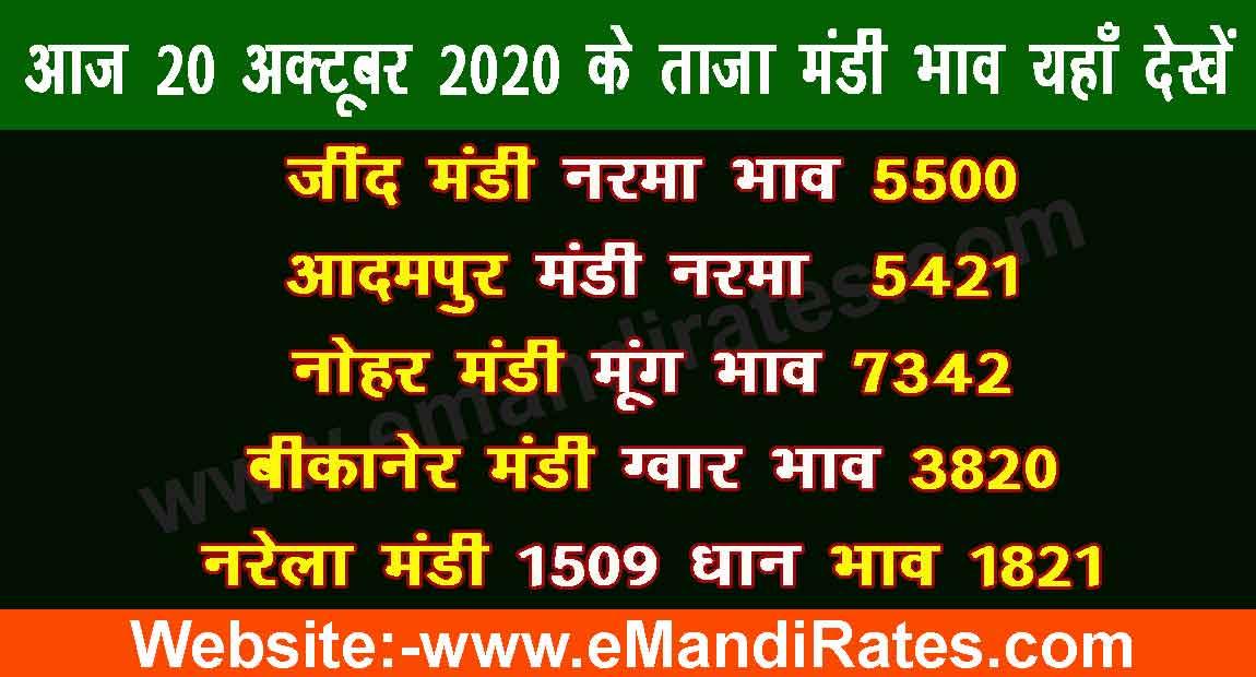 mandi bhav 20 October, Today's Cotton Price in India