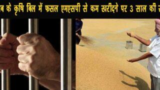 कृषि विधेयक पंजाब: किसानों से अब MSP से कम कीमत पर धान व गेहूं खरीद करने पर होगी तीन साल की सजा