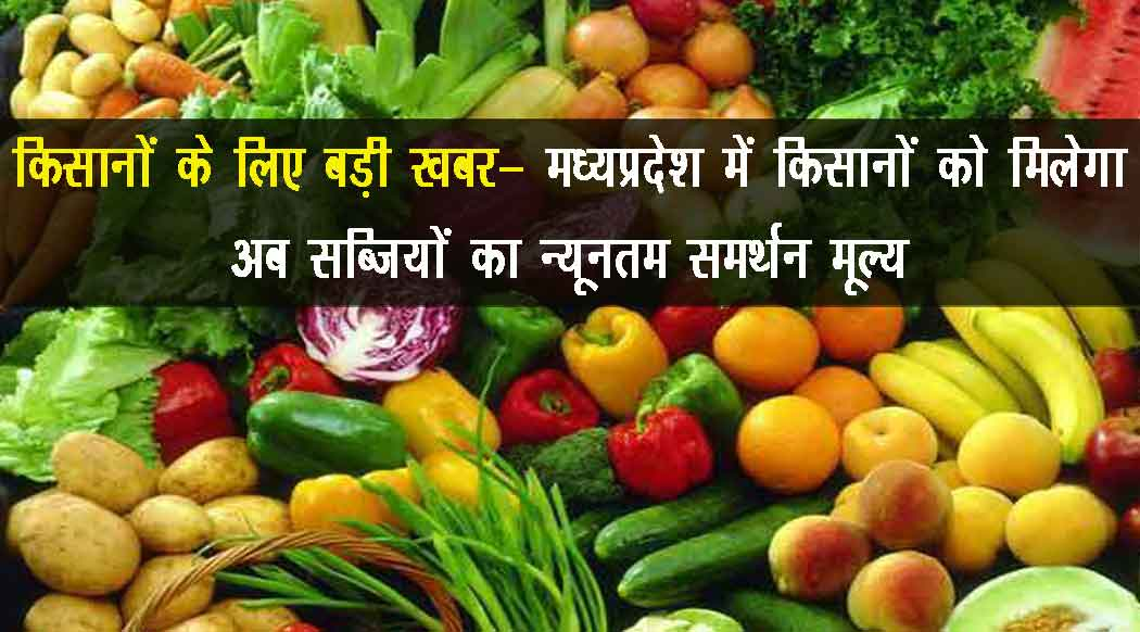 MSP of Vegetables In Madhya Pradesh