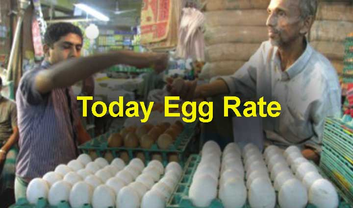 Today Egg Rate