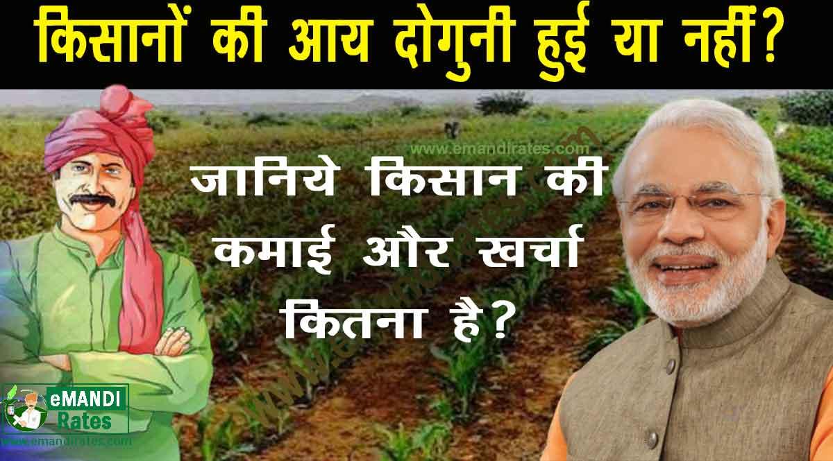 Farmers income in India: किसानों की आय दोगुनी हुई या नहीं