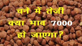 chana bhav