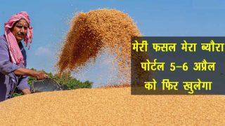 meri fasal mera byora portal re-open on 5-6 April rabi crops procurement