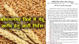 Important guidelines issued for procurement of wheat on support price in Sriganganagar district-2021