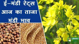 Today, 10 April 2021 Mandi Bhav