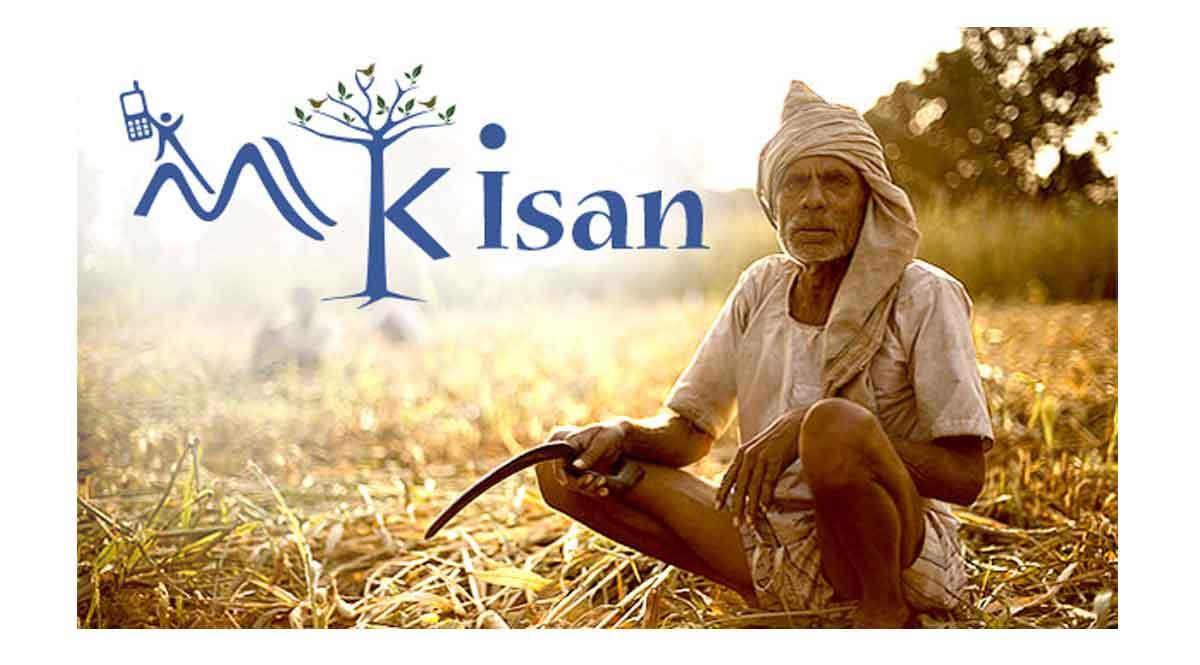 PM Kisan 8th Installment: नहीं मिली 2000 रु की 8वीं किस्त, तो जल्दी से करें ये काम