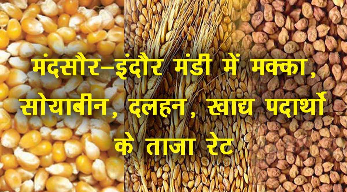 मंदसौर-इंदौर मंडी का भाव 30 जुलाई 2021: मक्का, सोयाबीन, दलहन, खाद्य पदार्थो के रेट