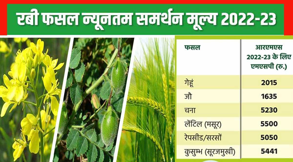 Rabi Crops MSP 2022