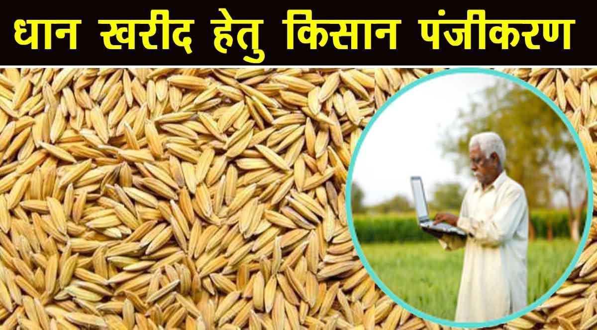 न्यूनतम समर्थन मूल्य (MSP) पर धान बेचने हेतु किसान यहाँ करवाये पंजीकरण