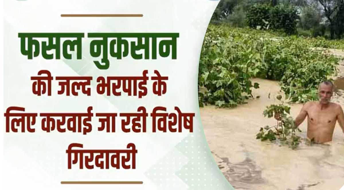 compensation for crop damage in haryana