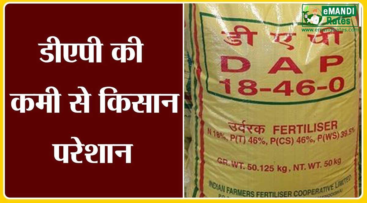 DAP खाद की कमी: खाद संकट के चलते किसानों को सिंगल सुपर फास्फेट का उपयोग करने की सलाह